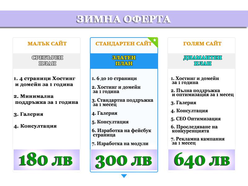 Зимна оферта - цена на уеб сайт