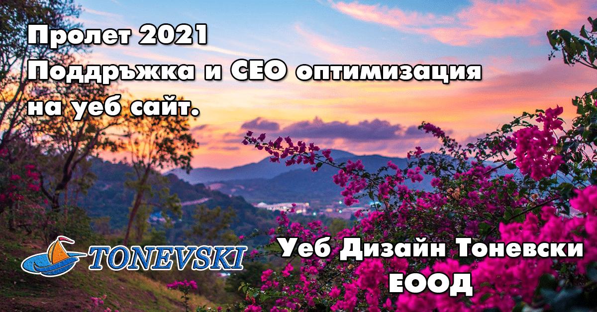 2021 Поддръжка и СЕО
